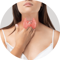 Causes of Carpal Tunnel Syndrome - Dysfunction of Thyroid