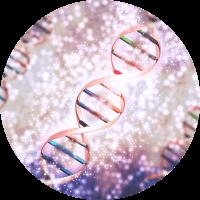 Causes of Varicose Vein - Heredity